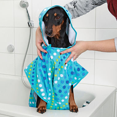 Hunde-Poncho